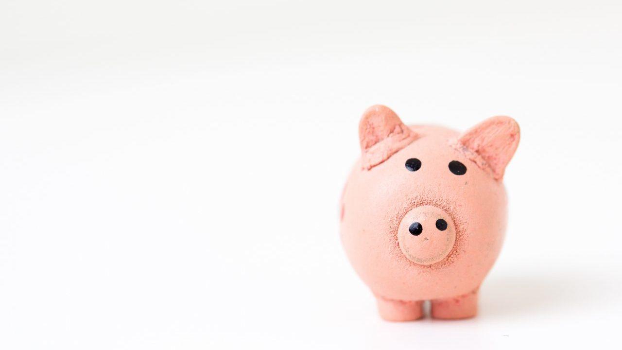 お金ない、20代で貯金なしだった私がコツコツ1年で100万円貯めた話